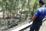 Petugas pemadam kebakaran Bantul saat berupaya memadamkan api di lahan milik Noto Utomo, warga RT 05 Dusun Pajimatan, Desa Girirejo, Imogiri, Jumat (9/10/2015) siang. (Harian Jogja/Arief Junianto)