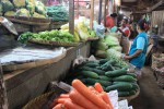HARGA SAYURAN SOLO : Musim Penghujan, Beberapa Jenis Sayuran Di Solo Menghilang