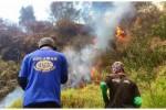 Sukarelawan berupaya memadamkan kobaran api yang melalap hutan di Gunung Merapi. (JIBI/Solopos/Istimewa)
