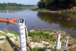 Waspada Banjir, Bojonegoro Berlakukan Status Siaga I