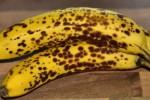 Ilustrasi pisang dengan kulit bintik-bintik hitam (Healthtipsportal.com)