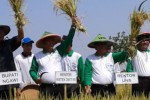 PANEN RAYA NGAWI : Dari Ngawi, Menristekdikti Dorong Pertanian Organik