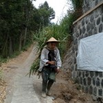 LONGSOR BOYOLALI : Penyebab Longsor Lereng Merapi: Tebing Ditanami Sayuran!