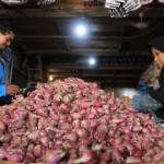 Pedagang bawang merah di Pasar Legi Solo melayani pembeli, Selasa (8/12/2015). Harga bawang dan sejumlah sayuran mengalami kenaikan akibat tidak ada pasokan.