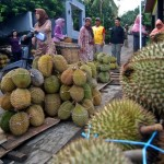 FOTO PASAR DURIAN : Pasar Durian Gunungpati Menggeliat