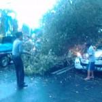 Petugas dan sukarelawan mengevakuasi mobil milik PLN Wonogiri tertimpa pohon, Rabu (27/1/2016). (Trianto Hery Suryono/JIBI/Solopos)