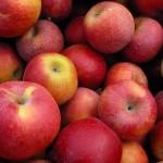Buah apel. (Listverse.com)