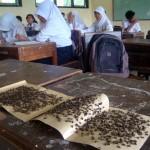 PENDIDIKAN SRAGEN : Serbuan Lalat Ganggu KBM SMPN 2 Sambungmacan