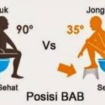 HASIL PENELITIAN : Bahaya Toilet Duduk bagi Kesehatan