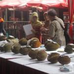 PESTA DURIAN : Ada Banyak Varian Durian di SFD 2016 Gunung Pati, Serbuu!
