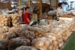 Kuswardani ketika menjajakan gula jawa di Pasar Beringharjo, Jogja. (Kusnul Isti Qomah/JIBI/Harian Jogja)