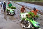 Peralatan Pertanian Sudah Modern, Petani Muda Diharapkan Semangat Terjun ke Sawah