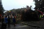 Pohon Beringin di Lapangan Denggung Roboh Timpa Kantor, 3 Pegawai Dilarikan ke Rumah Sakit