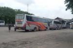 TERMINAL PURBOYO : UPTD Terminal Madiun Minta Pengaduan Resmi Korban Kru Bus Nakal