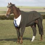 Foto kuda dengan kostum formal lengkap dengan jas dan topi. (Istimewa/Dailymail.co.uk)