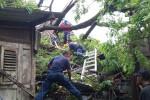 BPBD Kabupaten Bantun dibantu Koramil, Polsek, dan relawan saat membersihkan pohon tumbang yang menimpa gudang kayu jati di Dusun Jaranan, Kepanjen, Banguntapan, Bantul, Kamis (31/3/2016). (Yudho Priambodo/JIBI/Harian Jogja)