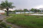 Ruang Terbuka Hijau di Kota Madiun Baru 11,8 Km Persegi