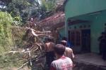 """CUACA EKSTREM : Angin Kencang dan Hujan Deras, Tiga Rumah di Kokap Jadi Korban Cuaca ekstrem menimbulkan sejumlah kerugian. Harianjogja.com, KULONPROGO- Setidaknya dua rumah yang berada di Dusun Gunung Kukusan, Desa Hargorejo dan Dusun Kalibuko II, Desa Kalirejo Kecamatan Kokap rusak parah akibat tertimpa pohon. Selain itu, adapula sebuah rumah di dusun yang sama rusak akibat diterjang tanah longsor yang terjadi bersamaan pada Minggu (3/4/2016) malam. Umar Nurjani, pemilik rumah di Dusun Gung Kukusan menjelaskan kejadian berlangsung sekitar pukul 18.30 WIB. Sebuah pohon Sengon setinggi 20 meter dengan diameter 60 sentimeter roboh menimpa teras rumahnya dan mengakibatkan genteng rumahnya rusak. Saat kejadian, ia mengaku sedang menjalani terapi pijat sehingga tak bisa segera menyelamatkan diri dan hanya bisa berteriak minta tolong. Meski demikian, tak ada korban jiwa dalam peristiwa tersebut. """"Saat itu saya sedang bersama anak, istri, dan tukang pijet tiba-tiba pohonnya roboh,""""jelasnya saat ditemui saat evakuasi lokasi pada Senin(4/4/2016). Karena kejadian itu, rumah bagian depan mengalami kerusakan dan sebagian kamar rusak. Selain itu, sebuah tiang listrik yang terbuat dari beton juga patah dan menimpa rumahnya. Umar menaksir kerugian yang dideritanya mencapai Rp15juta yang terdiri atas kerusakan parabola, sepeda motor, atap dan teras rumah. Pada saat yang sama, rumah milik Agustinus Aris Arnadi di Dusun Kalibuko II, Kalirejo, Kokap juga tertimpa pohon waru yang merusak bagian teras dan ruang tengah rumah tersebut. Selain pohon yang menimpa rumah Agustinus, beberapa pohon lainnya juga ikut tumbang akibat hujan dan angina encang yang mendera. Akibat banyak genteng yang rusak, Agustinua kemudian mengungsi pulang ke rumah orang tuanya. Di dusun yang sama, rumah milik Parmono juga nyaris jebol terkena longsoran tanah ada saat yang sama. Tebing setinggi enam peter dan panjang 8 meter tersebut menerjang dinding samping rumah yangterbuat dari kayu dan anyaman bambu sehingga"""
