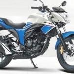 Suzuki Gixxer 150. (Indianautosblog.com)