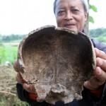 BENDA BERSEJARAH TULUNGAGUNG : Lokasi Penemuan Tengkorak Diduga Bekas Barak Prajurit Jayabaya