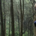 Salah satu pengunjung, Rewita Nugraheny, 27, asal Jl. Kaliurang, DI Yogyakarta, menjajal permainan flying fox di Kopeng Treetop Adventure, yang terletak di lereng Gunung Merbabu, tepatnya di Desa Batur, Kecamatan Getasan, Kabupaten Semarang, Sabtu (21/5/2016). (Imam Yuda Saputra/JIBI/Semarangpos.com)