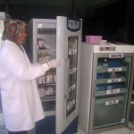 Petugas laboratorium Unit Transfusi Darah (PMI) Sragen memeriksa kantong darah yang disimpan di pendingin udara di PMI Sragen, Senin (27/6/2016). Stok darah PMI menipis karena hanya bisa memenuhi kebutuhan tiga hari ke depan. (Tri Rahayu/JIBI/Solopos)