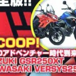MOTOR KAWASAKI : Versys-X 250 Bisa Pakai Sparepart Ninja 250