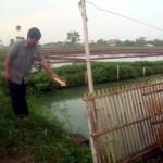 Personel Tim Identifikasi Polres Sragen menunjukkan kolam ikan tempat tenggelamnya Putra Gautama saat olah kejadian perkara di kompleks kolam ikan milik jemaah Masjid MTA Perumahan Plumbungan Indah, Karangmalang, Sragen, Rabu (29/6/2016). (Tri Rahayu/JIBI/Solopos)