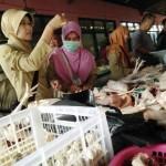 RAZIA KARANGANYAR : Terkuak, Pedagang Rendam Daging Ayam Agar Terlihat Segar