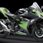 Kawasaki Ninja 250. (Kawasaki-motor.co.id)