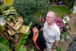 Setelah dua dekade, sebuah pohon pisang di Inggris berbuah (SWNS)