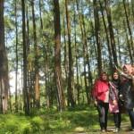 Pengunjung berfoto selfie dengan latar hutan pinus di Bukit Suwondo, Desa Gumiwang Lor, Kecamatan Wuryantoro, Wonogiri, Senin (25/7/2016). (Rudi Hartono/JIBI/Solopos)