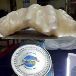 Mutiara dari kerang jimat milik nelayan Filipina. (Dailymail.co.uk)