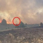 Penampakan diduga hantu saat kebakaran peternakan (Daily Mail)