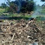Rusak Akibat Banjir, Perbaikan Taman Urban Forest III Mencapai Rp100 juta