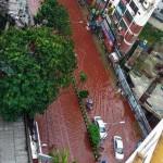 Banjir darah di Dhaka Bangladesh saat Iduladha (indiatoday.com)