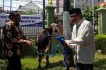 Direktur Utama BPD DIY Bambang Setiawan secar simbolis menyerahkan hewan kurban berupa sapi kepada Walikota Jogja Haryadi Suyuti di Komplek Balai Kota Jogja, Jumat (9/9/2016) (Ujang Hasanudin/JIBI/Harian Jogja)