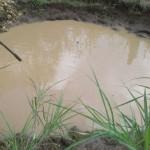 Kolam air muncul di tanah yang ambles di tanah tegal Ndangnibo, Ngargoharjo, Giritontro, Wonogiri. (istimewa)