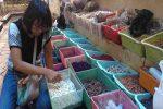MUBENG BERINGHARJO : Jualan Sampah Bisa Raup Rp3 juta per Hari