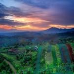 Tempat Nongkrong Paling Menarik di Bandung, Warung Daweung