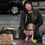 Will Andersen dan Anjingnya (Newyorkpost)
