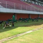 Latihan Terakhir Timnas di Maguwoharjo, Riedl Coret 3 Pemain