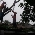 BENCANA WONOGIRI : Angin Ribut Terjang Kawasan WGM, 2 Rumah Rusak