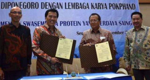 draft mou with diponegoro university