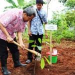 BUDIDAYA KAKAO : 3 Desa di DIY Dikembangkan Jadi Desa Kakao