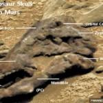 Pengamat Antariksa Temukan Penampakan Mirip Fosil Dinosaurus di Planet Mars