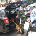 BANDARA ADISUTJIPTO : Perketat Pengamanan, Petugas Gunakan Anjing Pelacak