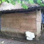PETERNAKAN PONOROGO : Ada Kandang Ayam, Warga Serangan Mengeluh Banyak Lalat dan Bau