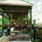 Akademisi dari Berbagai Negara Berkumpul Bahas Produk Pertanian