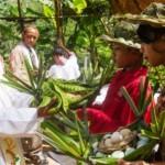 FOTO HARI NATAL 2016 : Begini Misa Natal Alam di Perkebunan